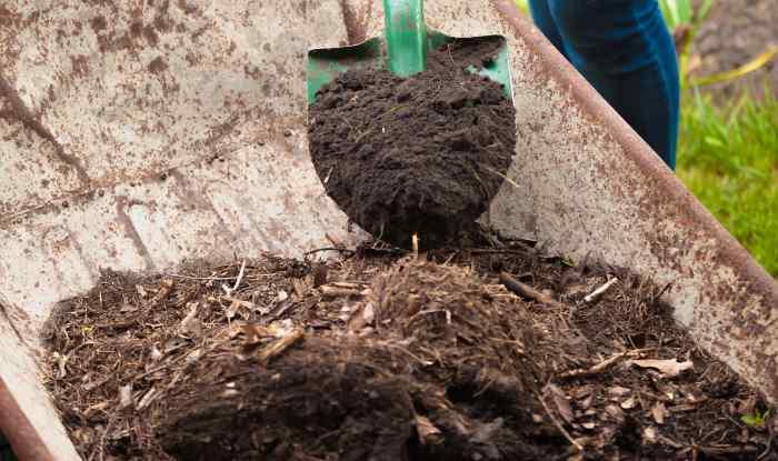 compost in wheelbarrow