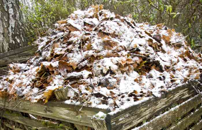 composting in the winter