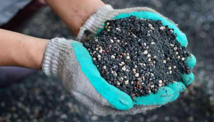 manure vs fertilizer