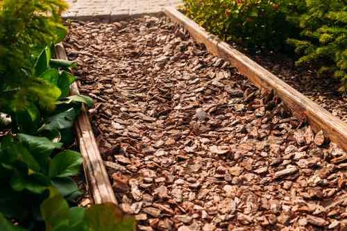 wood chips walkway path