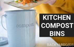 Best Kitchen Compost Bins To Buy In 2020